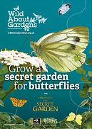 Secret garden for butterflies.jpg