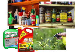 Collection of garden chemicals