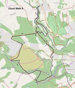 Churt Walk 9c .jpg