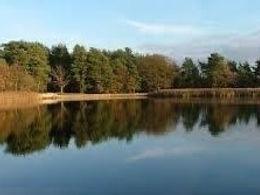 Walk 4 Little Pond (2).JPG