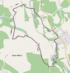 Churt Walk 2.jpg