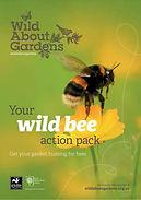 Wild bee action pack.jpg