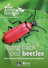 Bring back our beetles