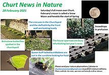 News in Nature 27 feb 2021.jpg
