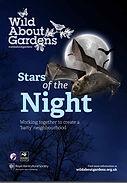 Stars of the Night.jpg