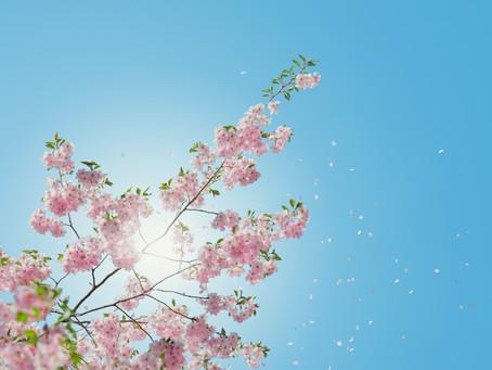 In de lente zonnecrème smeren?