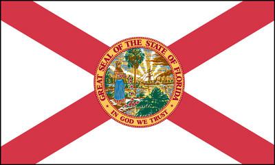 'Guns, School Safety, Mental Health': Tallahassee debates new gun legislation