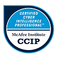 Certified Cyber Intelligence Professional