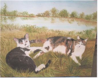 2004 les chats repos dans l'herbe