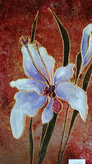plexi iris bleu