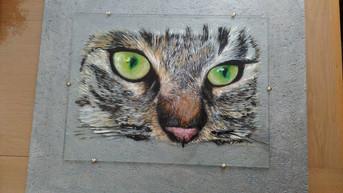 tableau dans tes yeux de  chat.