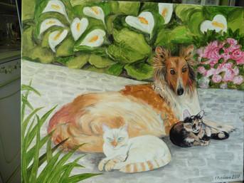 chien et chats sur la terasse