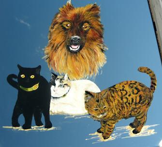 portraits d'animaux sur miroir