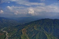 NearBirds.Colombia.La Pintada