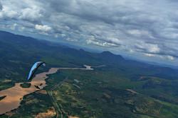 NearBirds. Brazil. Baixo Guandu