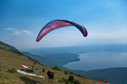 NearBIrds.Macedonia.Ohrid
