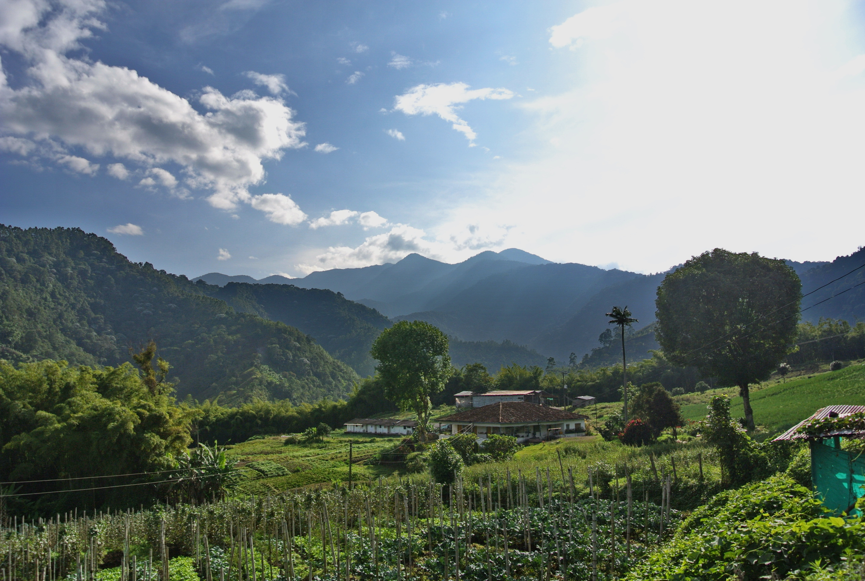 Колумбийские пейзажи
