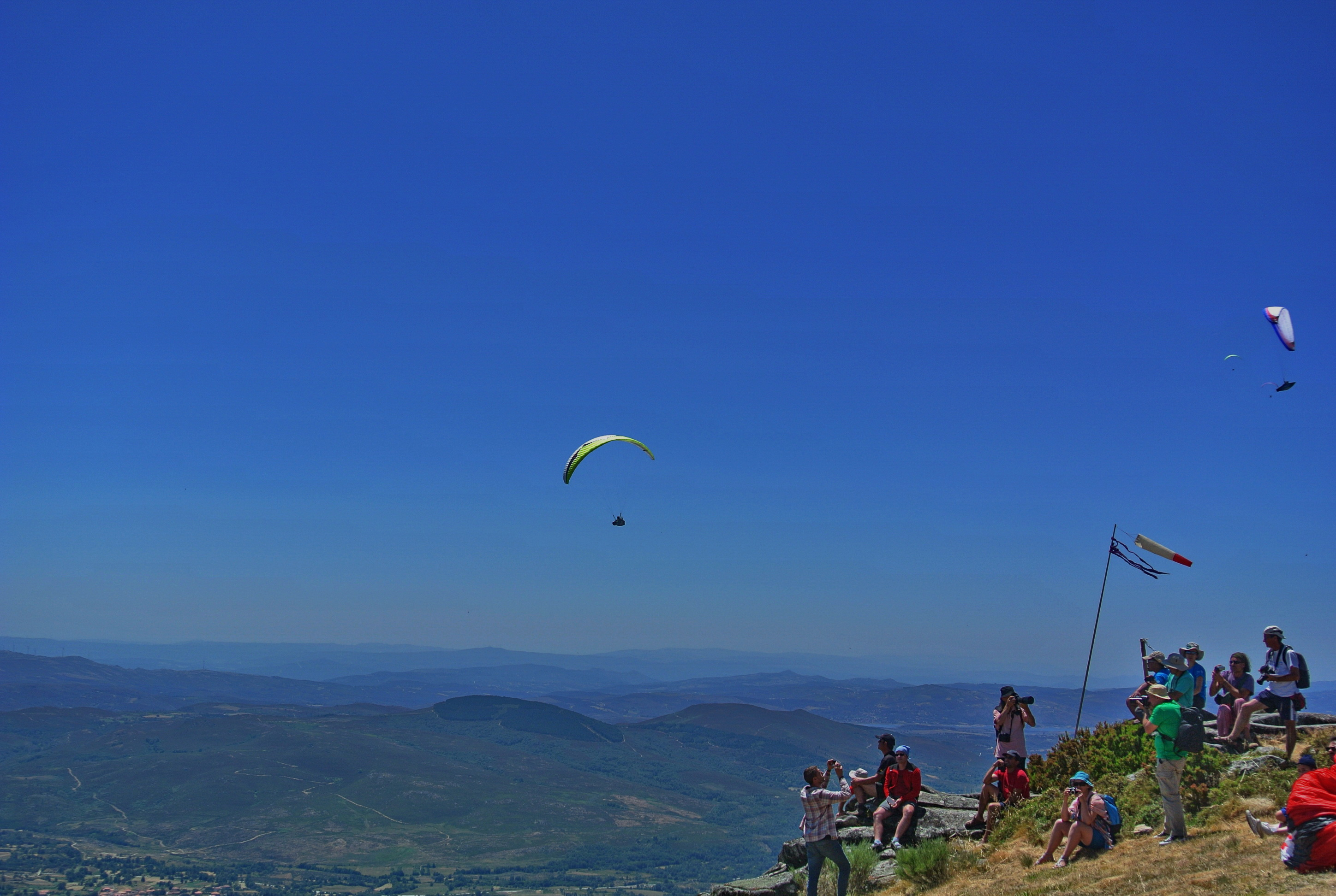 NearBirds. Portugal. Montalegre