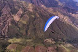 NearBirds.Colombia.Roldanillo