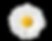 Screen Shot 2020-04-19 at 9.30.56 PM.png