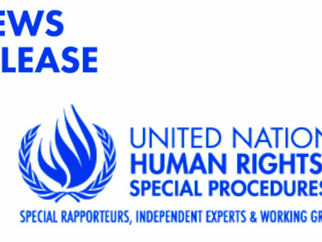 Human Rights: A Media Guide to the new UN independent experts (2020)