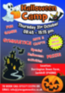 hallowen poster 2019 PSHOP.jpg
