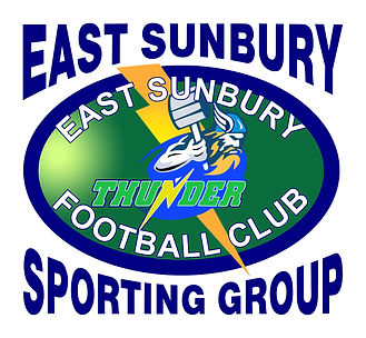 Football Logo Updated Nov 2016.jpg