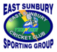 Cricket Logo Updated October 2017.jpg