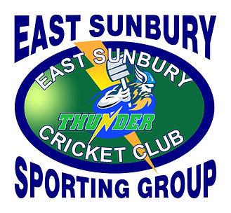 Cricket Logo Updated October 2017.jpg