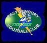 Football Logo Updated Nov 2016 Transpare