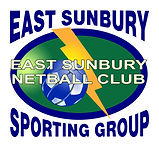 Netball Logo Updated Nov 2016.jpg