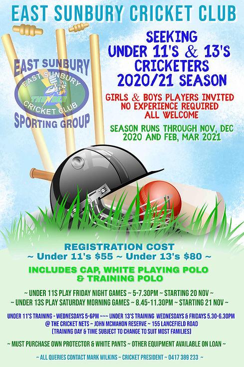 Cricket 2020 2021 Advertisement RESIZE.j