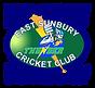 Cricket Logo Updated October 2017 Transp