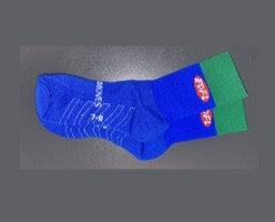 ESFC Playing Socks (SHORT)