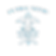 flyingquid-logo-transparent.png