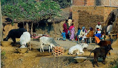 Het leven in een Pakistaans dorp is eenvoudig en speelt zich af rondom kerk of moskee.