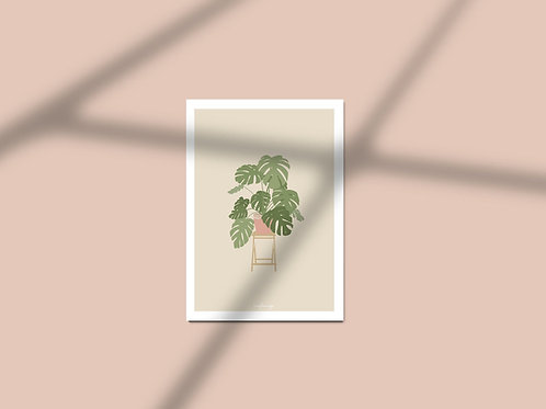 Affiche / Poster A4 - Monstera plant