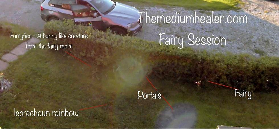 Themediumhealer.com - Fairy sessions- fa