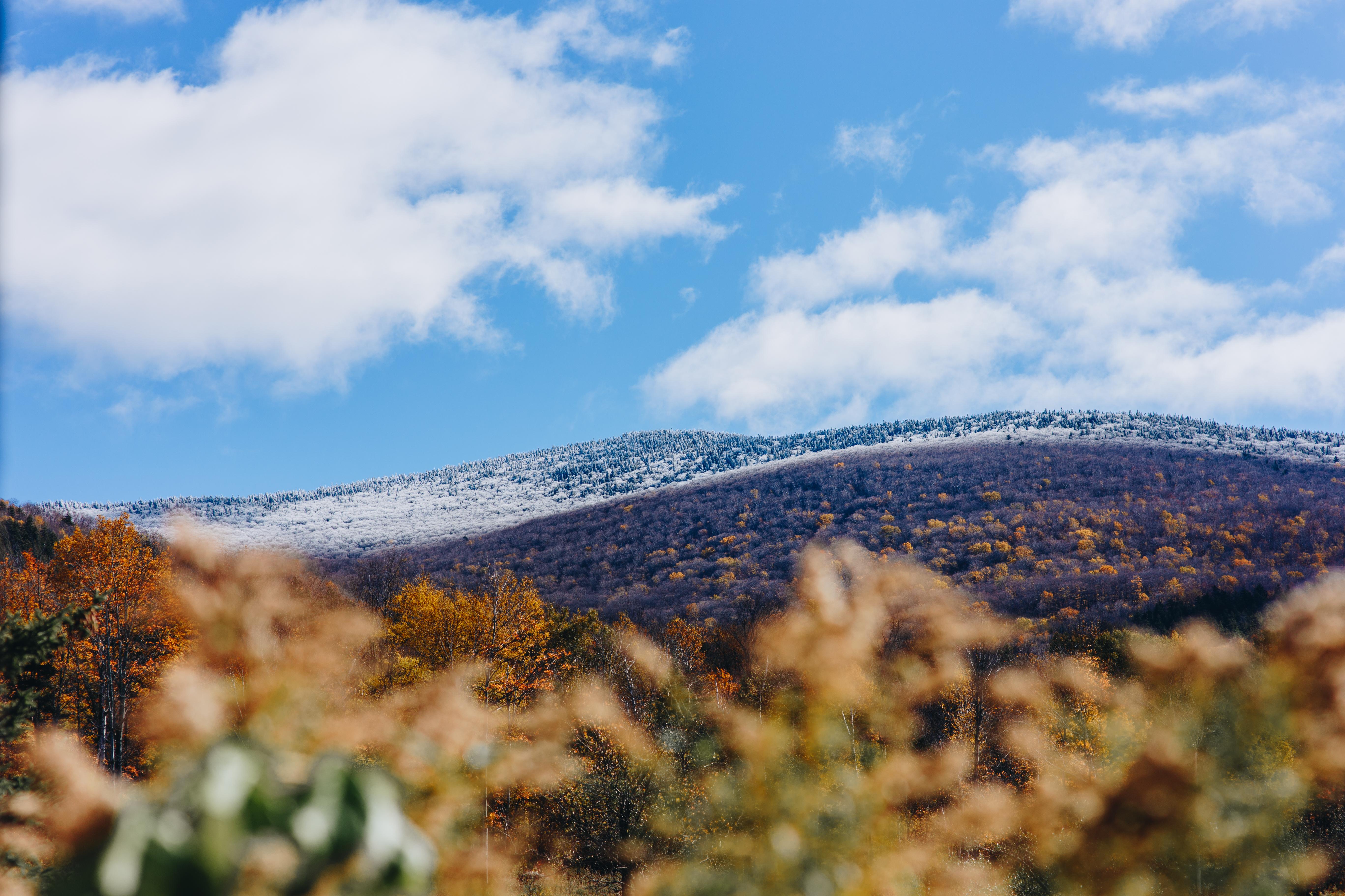 Mt. Ellen