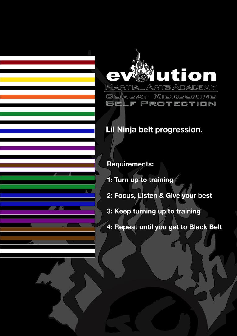 Lil Ninja Belt progression