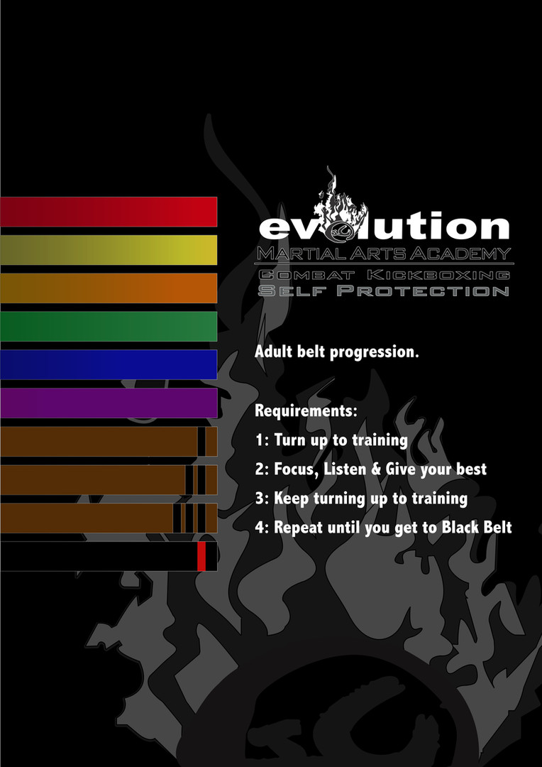 Adult Belt progression