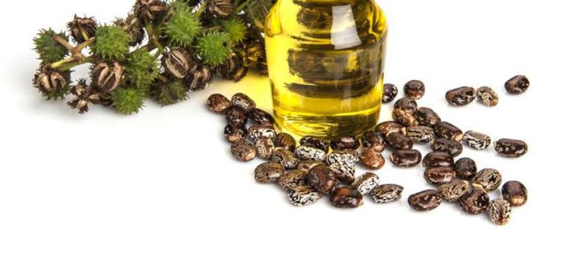 organic_castor_oil.jpg