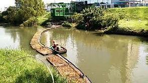 contenção de lixo em rios e tratamento da água usando capim vetiver