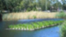 Floating-Wetlands-Floating-Islands-Aqua-