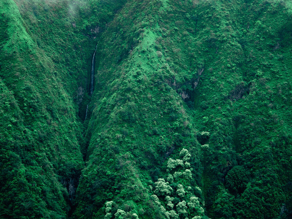hawai'i tourism // integrated