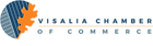 VISC_horizontal_logo (1).png