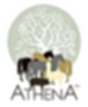 Athena loga.png