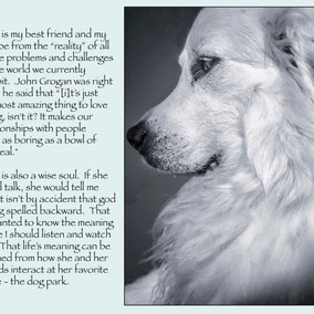 God Is Dog Spelled Backward