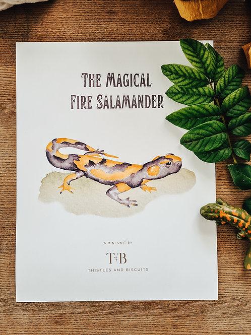 Salamander Mini Unit