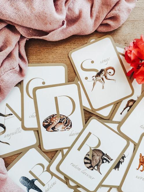 French Alphabet Flashcards